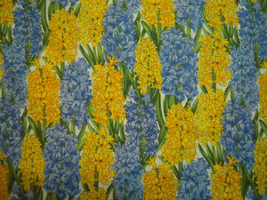 Hoffman hyacinter