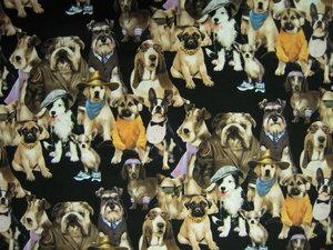 hundar med kläder